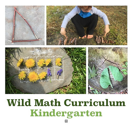 Wild Math Curriculum Kindergarten