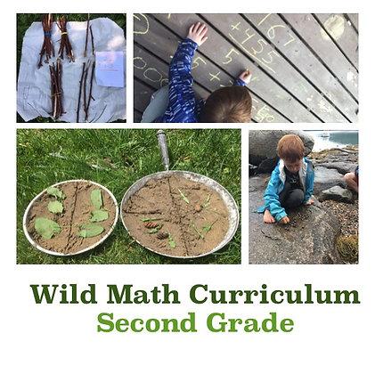 Wild Math Curriculum Second Grade