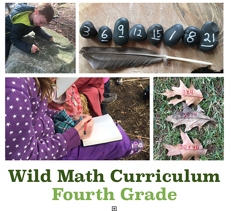 Wild Math Curriculum Fourth Grade