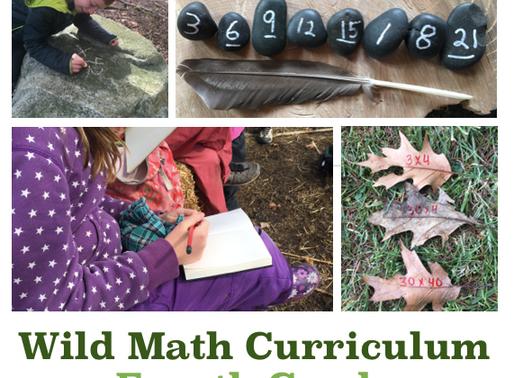 Planning Wild Math