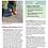 Thumbnail: Wild Math Curriculum Kindergarten