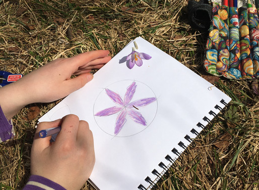 Making a six-sided flower with a compass!