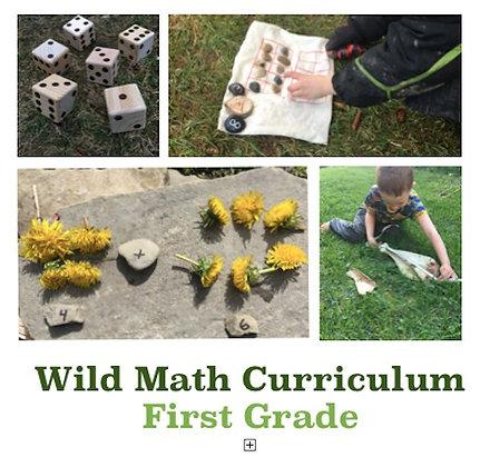 Wild Math Curriculum First Grade
