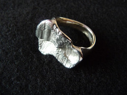 ring zilver : 175 €