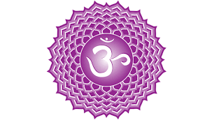Crown Chakra, Symptoms of blocks.