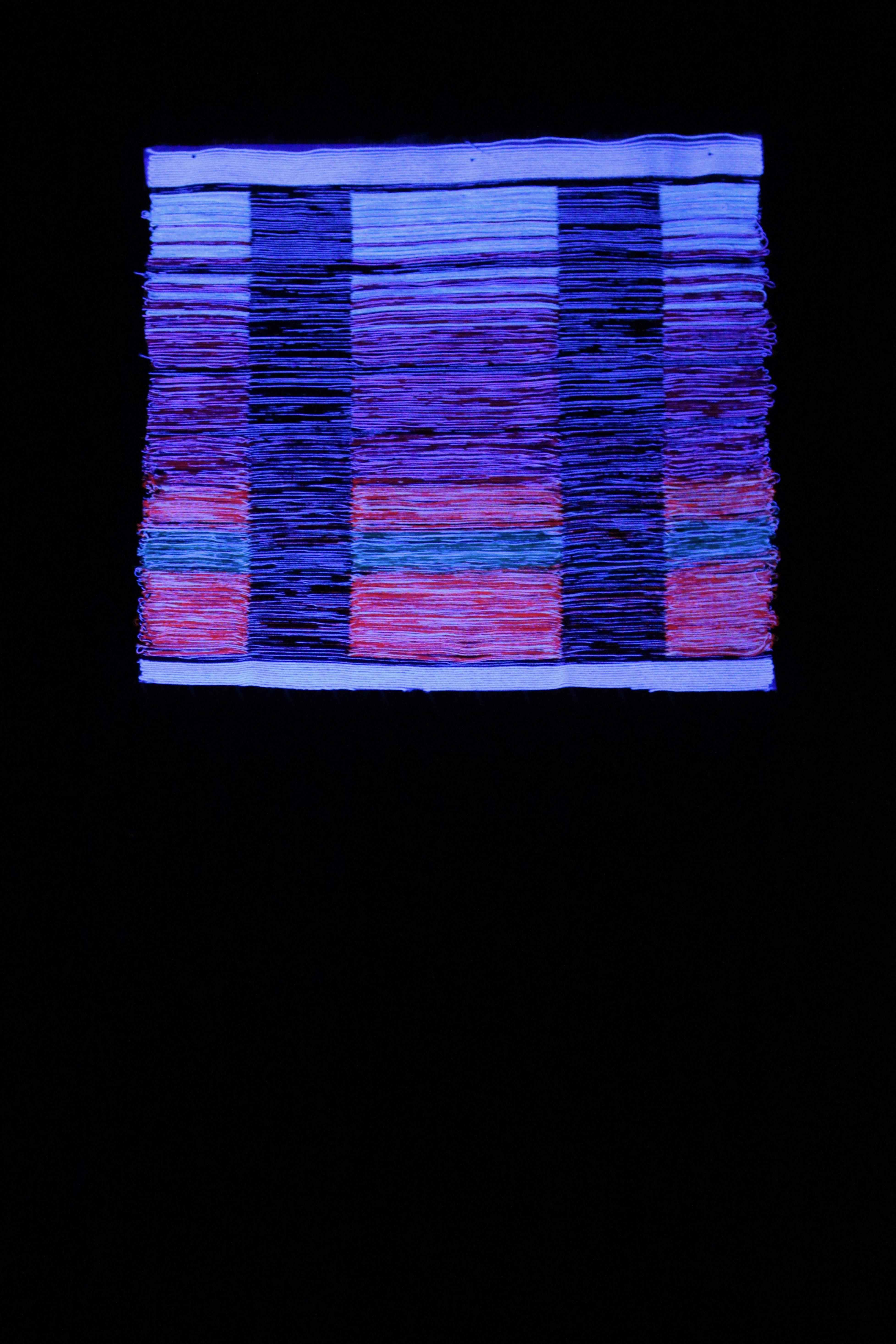BioLOOMinescence 6