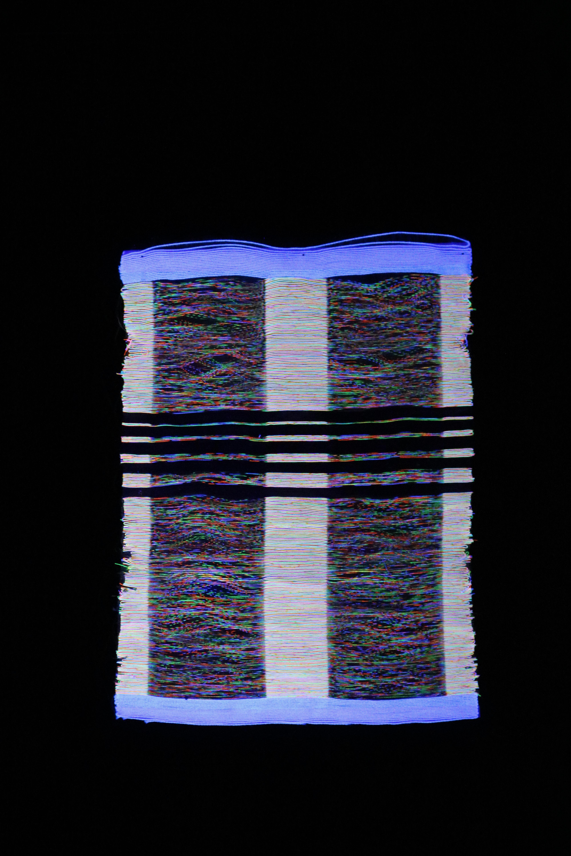 BioLOOMinescence 2