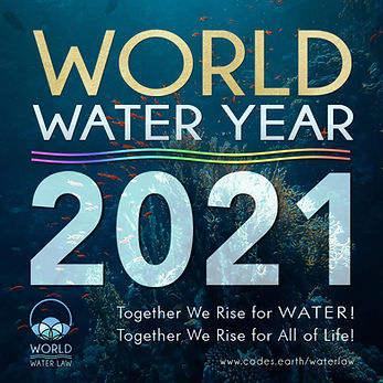 World water year 2021 v9.jpg