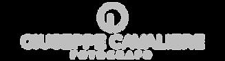 Logo_GCF_2.png