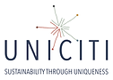 UNICITI - small size - Olga Chepelianska