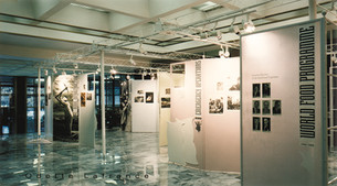 Expo Architectural Design. FAO