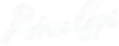 Prince Gyasi –– Signature white.png