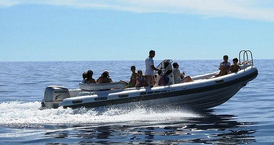 CruiseBoat FLIPPER