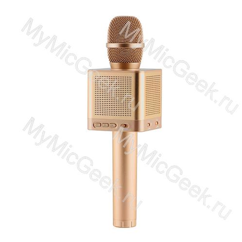 MicGeek Q10S Золото (мощность 20Вт) Стерео звук