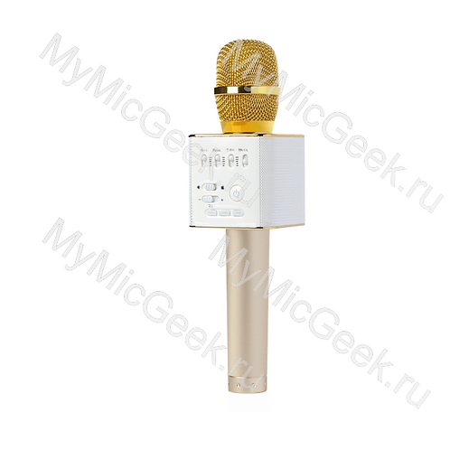 MicGeek Q9 Золото (мощность 10Вт)