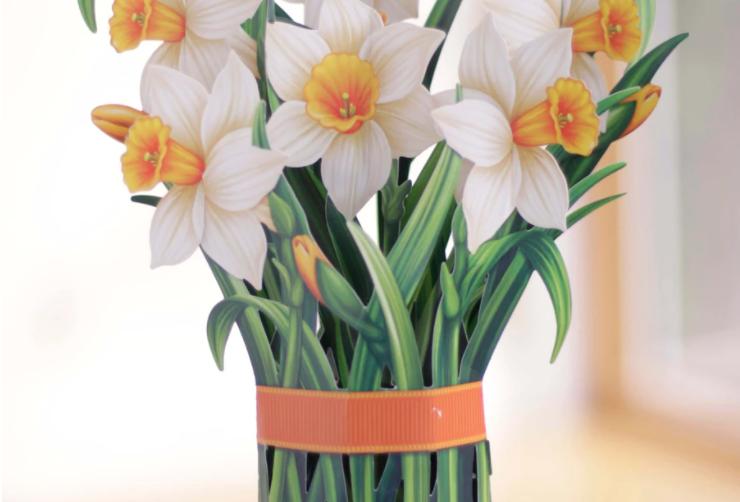 FreshCut Daffodil Bouquet