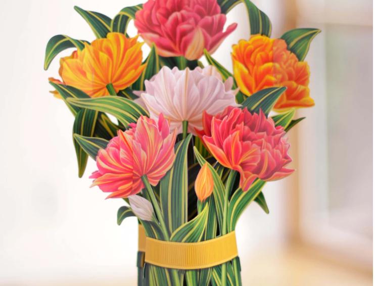 FreshCut Murillo Tulip Bouquet