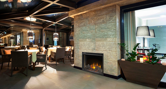 Napoleon Fireplace, Ascent 40, Electric, Built-In