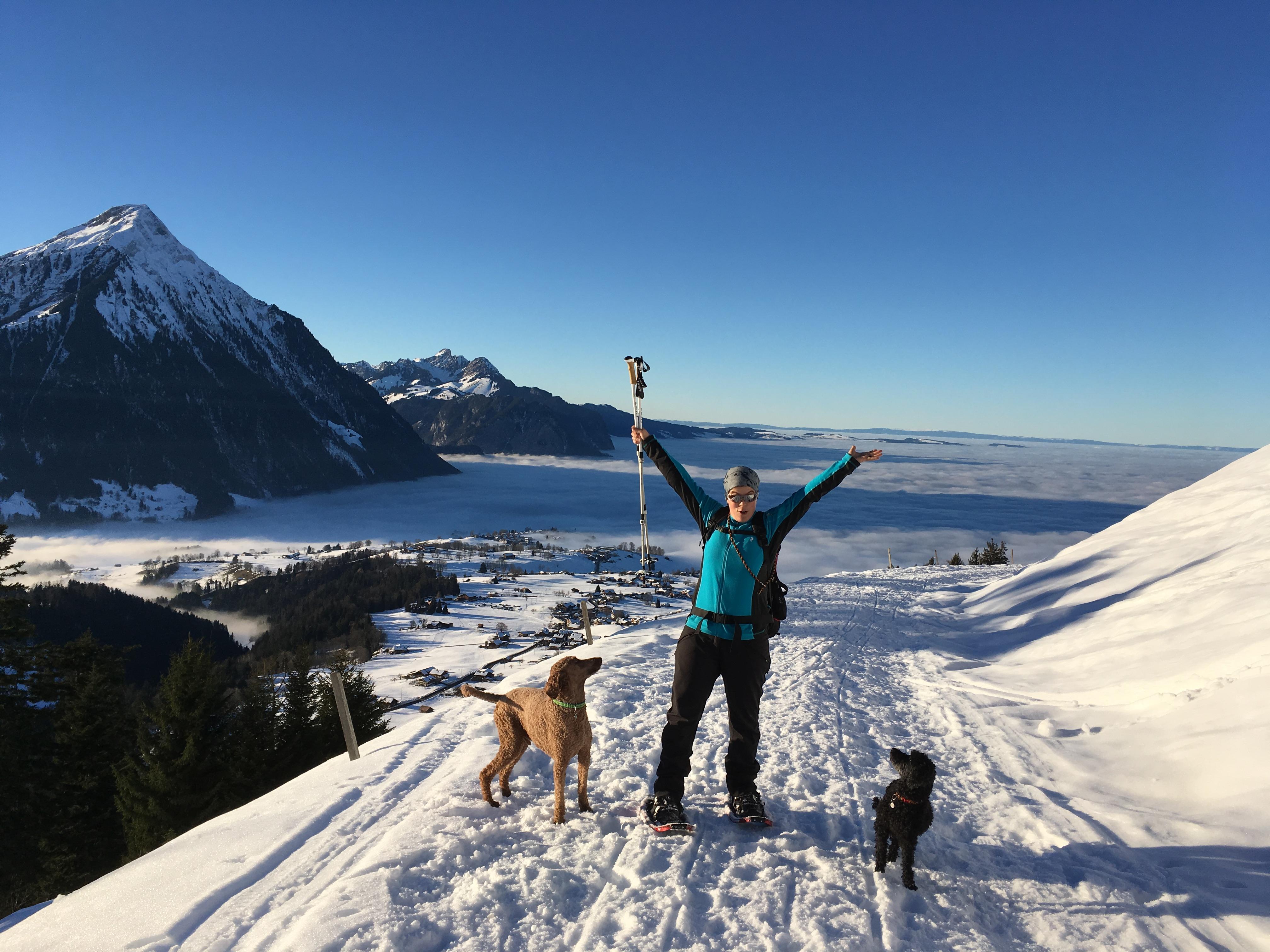 Schneeschuh mit Hund