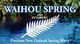 Waihou Spring Logo.jpg