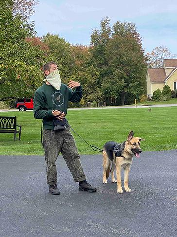 German Shepherd Training CT