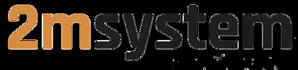 Logo 2M System.png