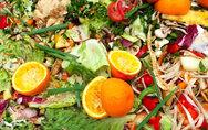 Diverting Organic Materials from Landfill