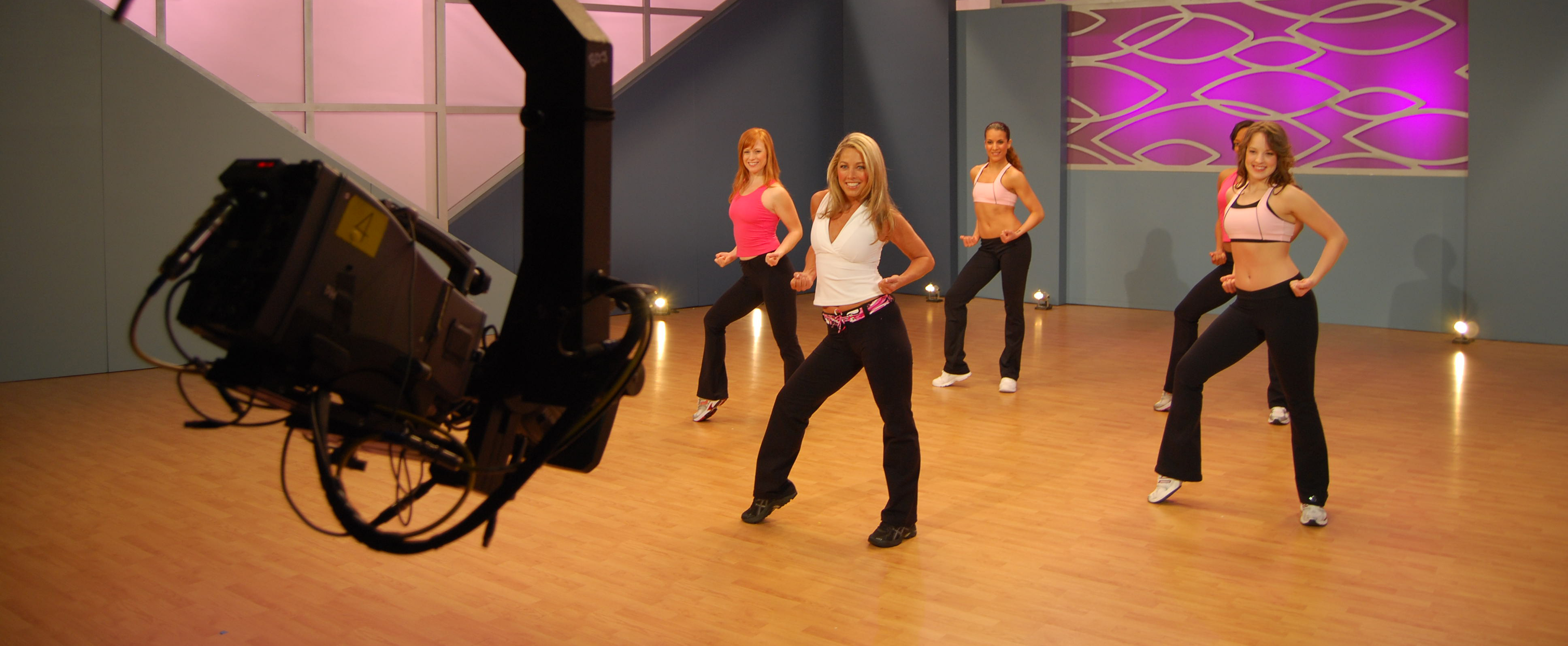DENISE AUSTIN WORKOUT DVDS