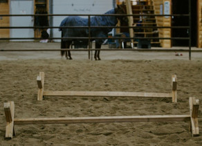 DON'T LET WINTER FREEZE YOUR HORSES FITNESS