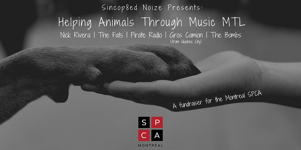 Helping Animals Through Music MTL