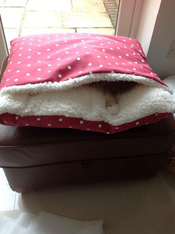 Deep Red Dotty Snuggle Bed