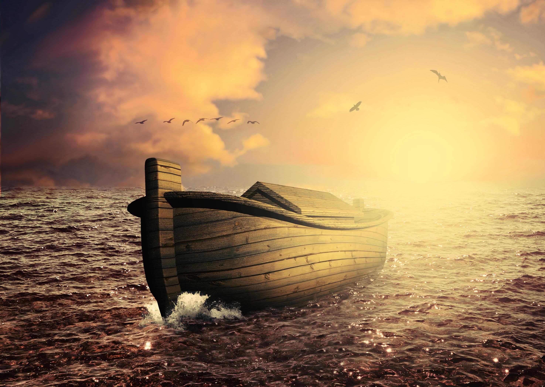 Escape the flood