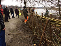 Hedge laying training day