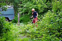 Vegetation Control - Brushcutting