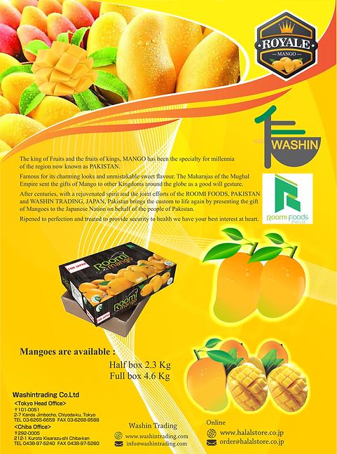 mango broucher.png