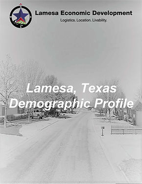Demographic Cover.jpg