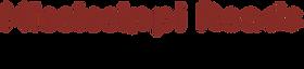 msrob logo transparent.png