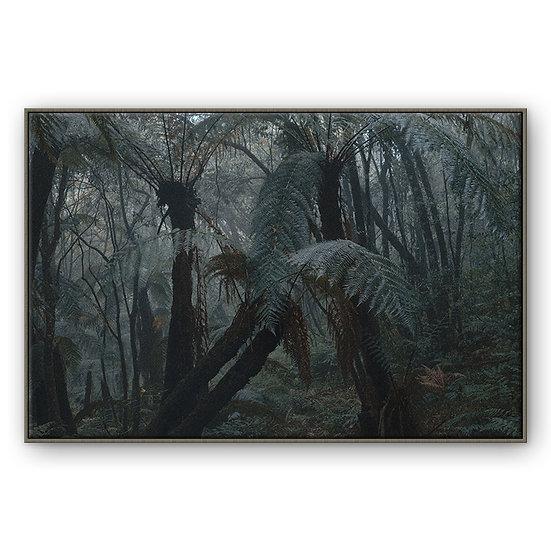 Floresta de Xaxins