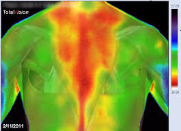 THERMOGRAPHY!!!  NOW AVAILABLE AT THE OFFICE!!!
