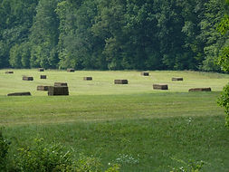 Lehigh Valley Field