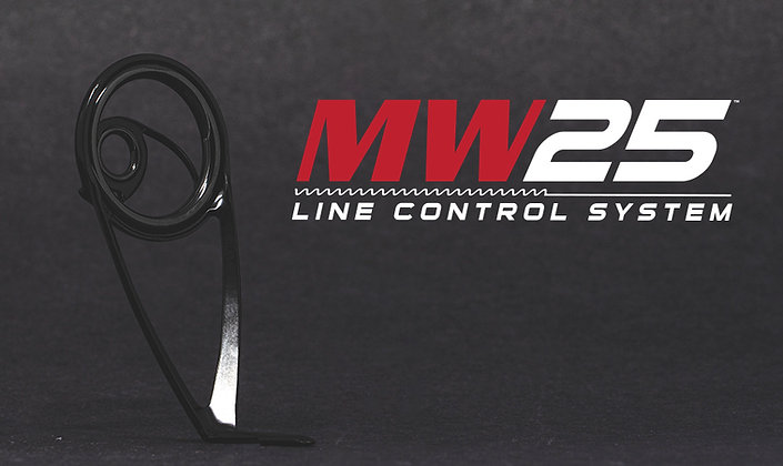 MicroWave25 Line Control System