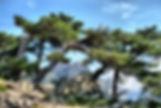La montagne | Villa Diamondhead Corse