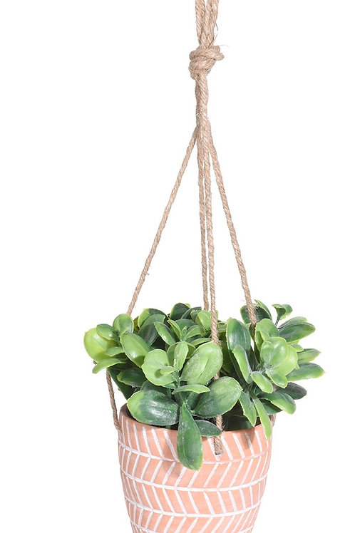 Plant in terracotta pot jute 10x10x16cm