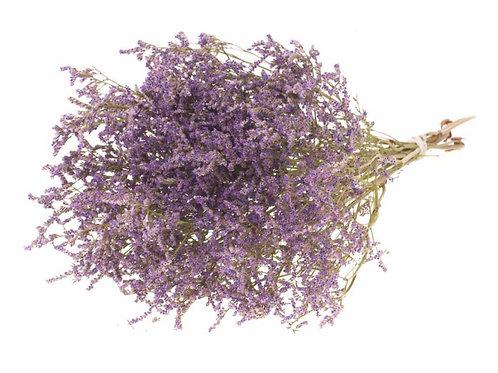 Statice tatarica natural purple dried