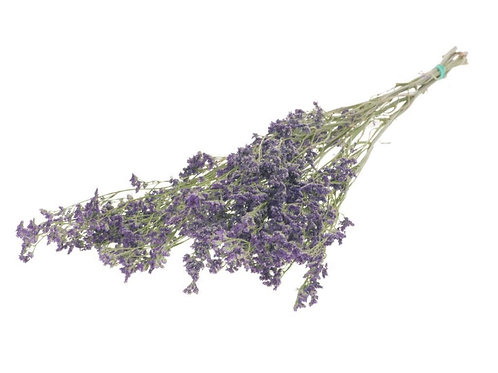 Limonium natural light purple dried