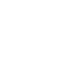 dvision.png