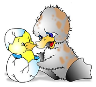 Ucky Duck Ilustration.png