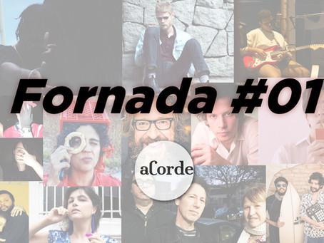 Fornada #01