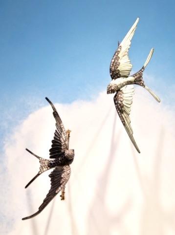 Exposition Paradis d'Oiseaux