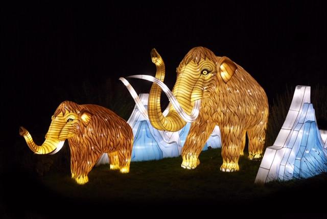 Espèces en voie d'illumination Jardin des Plantes